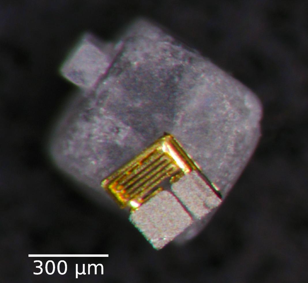 nanobot on a grain of table salt